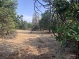 000 Sierra Way - Photo 4
