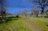 Oak Ranch Estates - Photo 10