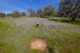 Oak Ranch Estates - Photo 12