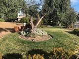 835 Santa Cruz Dr. - Photo 2