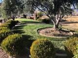 835 Santa Cruz Dr. - Photo 7