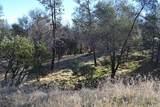 15333 Mountain Shadows Dr - Photo 6