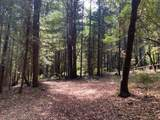 920 Bear Creek Rd - Photo 1