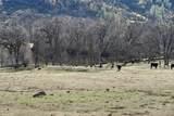 1864 acres Highway 36E - Photo 11