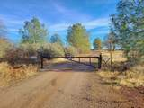 1864 acres Highway 36E - Photo 37