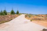 16259 Keswick View Way - Photo 9