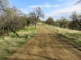 40 acres Trinity Alps Vista Road - Photo 6