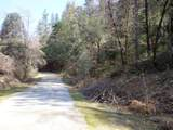 3.49 Acres Fawn Rd - Photo 13