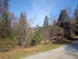 3.49 Acres Fawn Rd - Photo 14