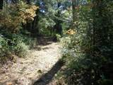 3.49 Acres Fawn Rd - Photo 2