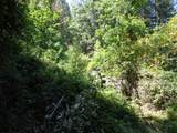 3.49 Acres Fawn Rd - Photo 3
