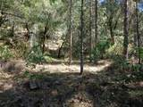 3.49 Acres Fawn Rd - Photo 4