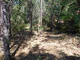 3.49 Acres Fawn Rd - Photo 5