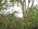 21795 Bend Ferry Rd Sp#4 - Photo 53