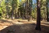 8482 Starlite Pines Rd - Photo 29