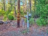 134 acres Whitmore Road - Photo 5