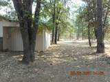 38003 Whaley Dr - Photo 3