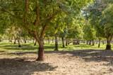 5203 Country Farms Ln - Photo 31