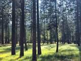 603 Valley Pines - Photo 23