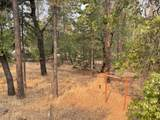 29196 Cow Creek Rd - Photo 13