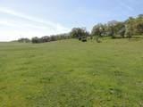 61 Acres Millville Plains Rd - Photo 17