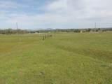 61 Acres Millville Plains Rd - Photo 19
