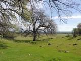 61 Acres Millville Plains Rd - Photo 23
