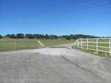 61 Acres Millville Plains Rd - Photo 3