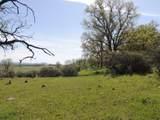 61 Acres Millville Plains Rd - Photo 30