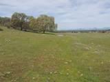 61 Acres Millville Plains Rd - Photo 39