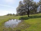 61 Acres Millville Plains Rd - Photo 43
