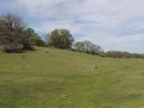 61 Acres Millville Plains Rd - Photo 44