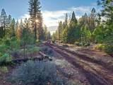119 acres Whitmore Road - Photo 1