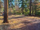 119 acres Whitmore Road - Photo 13