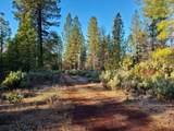 119 acres Whitmore Road - Photo 6