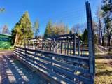 27960 Bullskin Ridge Rd - Photo 44