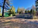 27960 Bullskin Ridge Rd - Photo 58
