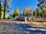 27960 Bullskin Ridge Rd - Photo 59