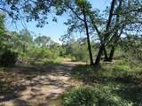 5.4 Acres Highway 44 East - Photo 6