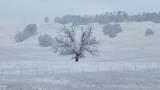 S Cow Creek Rd - Photo 57
