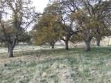 S Cow Creek Rd - Photo 65