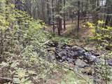 Lot 51 Battle Creek Dr. - Photo 13