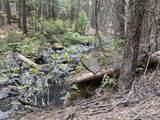 Lot 51 Battle Creek Dr. - Photo 15