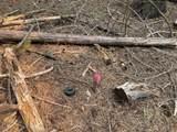 Lot 51 Battle Creek Dr. - Photo 8