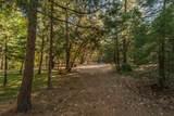 .71 Acres Off Trinity Meadows - Photo 13