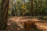 .71 Acres Off Trinity Meadows - Photo 22