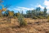 14021 Oak Run Rd - Photo 16