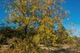 14021 Oak Run Rd - Photo 17