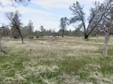 41acres Ash Creek Road - Photo 8
