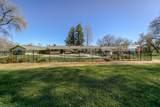 10046 Cow Creek Dr - Photo 6